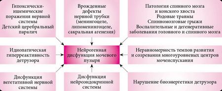 причины гиперактивного мочевого пузыря