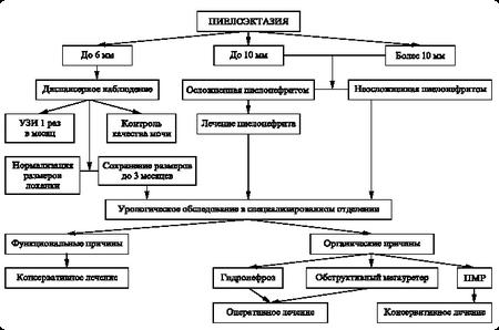 классификация пиелоэктазия почек у плода